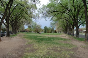 Altura Park 4921 Royene NE