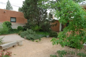 Xeriscaping in Albuquerque - 2208 Frederick PL NW